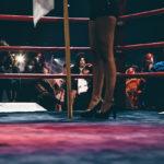 All In Fight Night - 2016