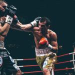 Boxing Fight Night - 2016